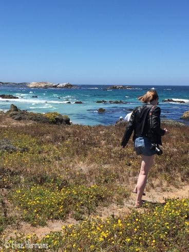 14. Monterey & CA coast (18)