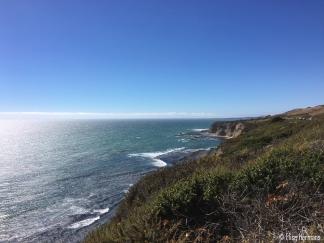 14. Monterey & CA coast (3)